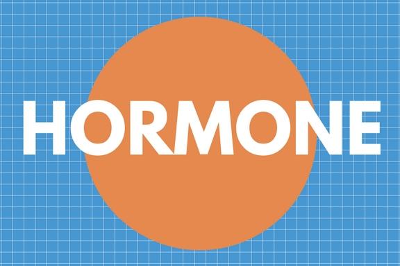 Schriftbild Hormone - Wechseljahre