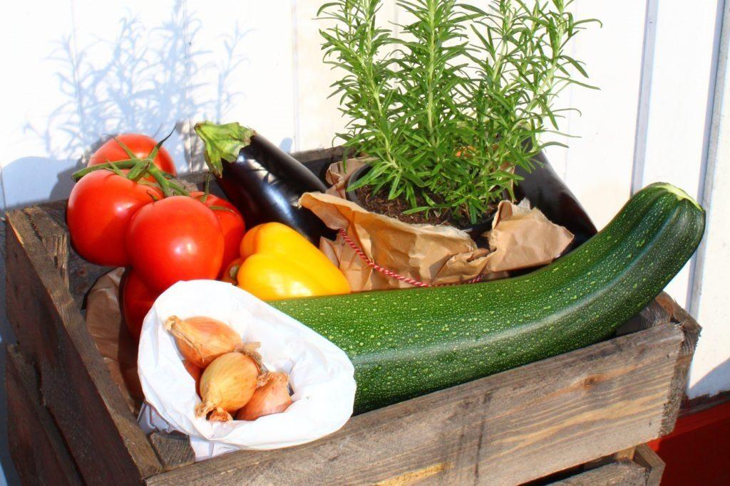 Gemüsekiste - die Zutaten für dieses LCHF Rezept Ratatouille-Hack-Auflauf