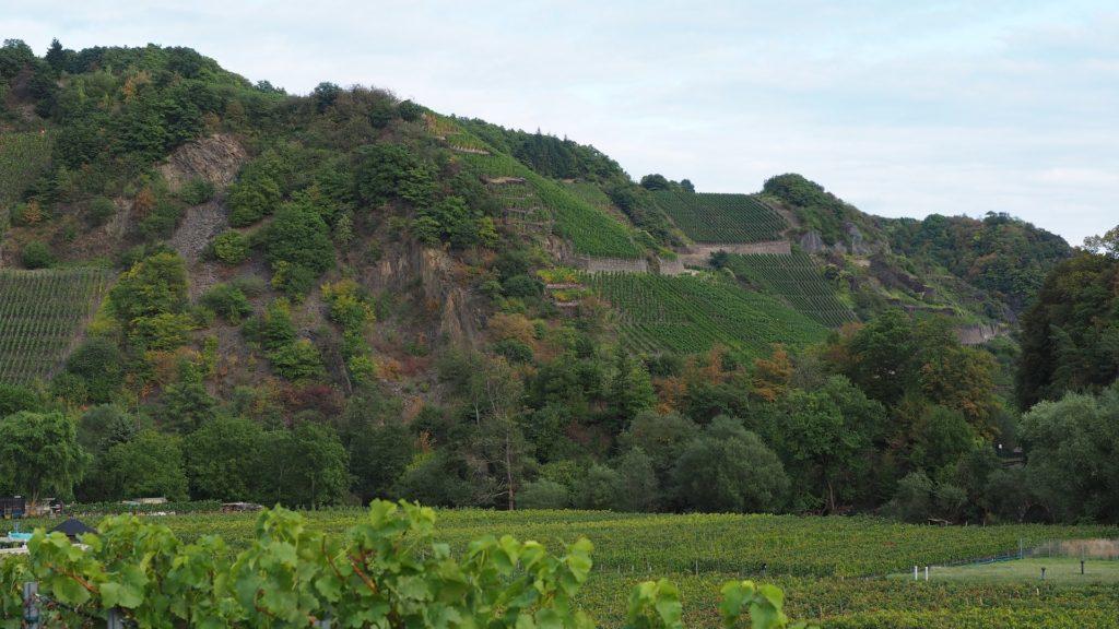 Ahrtal - Blick auf die Weinberge von Marienthal aus