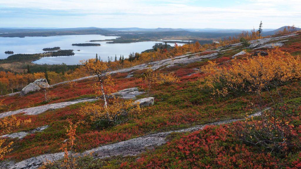 Wie viel brauchst du - Lappland, Jokkmokk, Jarre Berg - Indian Summer