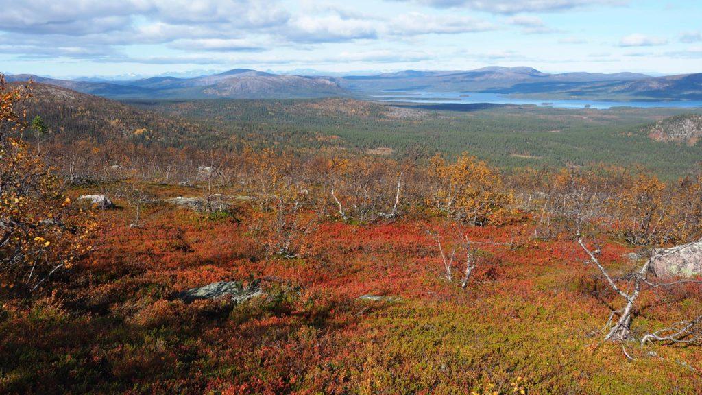 Wie viel brauchst du - Lappland, Jokkmokk, Jarre Berg - Indian Summer Nr 2