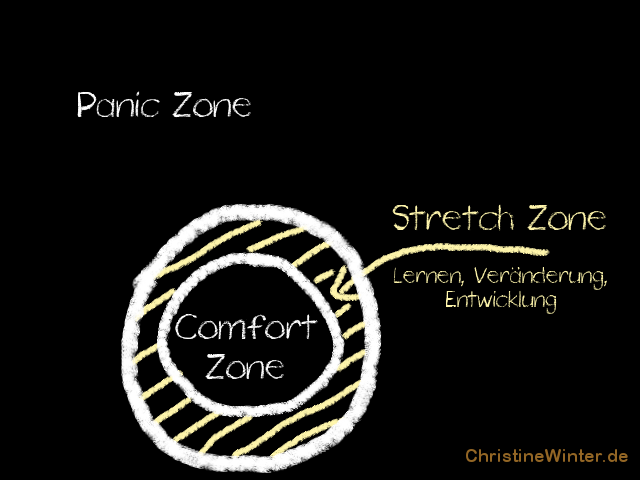 Komfortzone, Teil 2 - Schaubild 3 Die Introvertierten